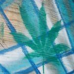 Marijuana reform is here, but minorities still get shafted