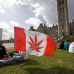 Despite Legalization, Canada's Pot Black Market Continues To Thrive