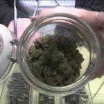 Washington County hemp farmer is high on local cannabis market