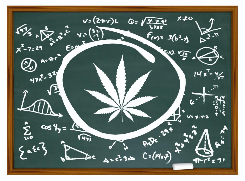 Illustration of marijuana and mathematic formulas on chalkboard